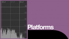 The Female Voice Platform, with a graphic of a voice recording level