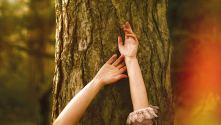 Three Days in the Country: A woman's arms against a tree trunk