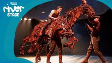 River Stage Week 6. Photo of Joey (War Horse) being ridden